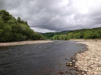 Scottish River Salmon Fishing