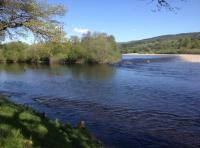 Fishing On The Salmon Rivers Of Scotland