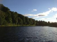River Tay Salmon Guide Services