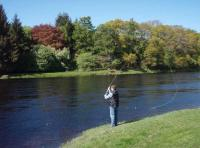 Speycasting Lessons In Scotland