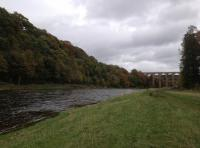 River Tweed Salmon Fishing Hospitality