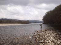 River Tay Salmon Fishing Tuition