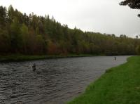 River Spey Salmon Fishing Events