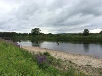 River Tay Fishing Event
