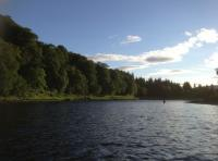Middle Tay Salmon Fishing Events