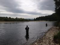 The Scottish Salmon Fishing Experience