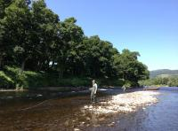 Salmon Fishing Hospitality Events in Scotland