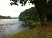 Salmon Fishing Beat Riverbank Maintenance