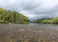 Fishing For Scottish Salmon