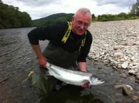 Catching Perfect Scottish Salmon