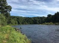 Fishing The River Tay