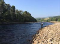 Salmon Fly Fishing Events